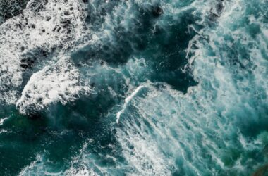 Unlocking the Blue Ocean: A Guide to FemTech for Investors